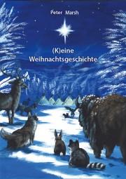 (K)eine Weihnachtsgeschichte